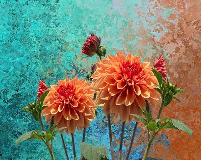 rozkvetlá podzimní zahrada.jpg