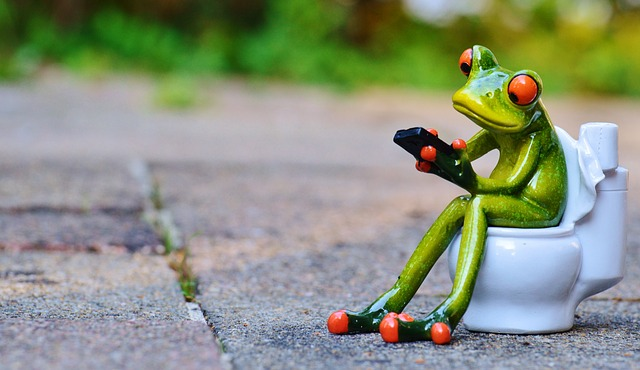 žába na toaletě